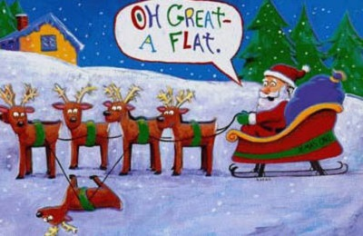 Funny Photos Christmas