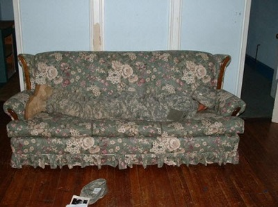 Funny Photos Camouflage