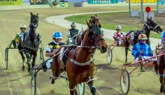 Tabcorp Park Harness Racing, Melton South