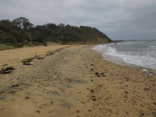 Sunnyside North Beach - Alchetron, The Free Social